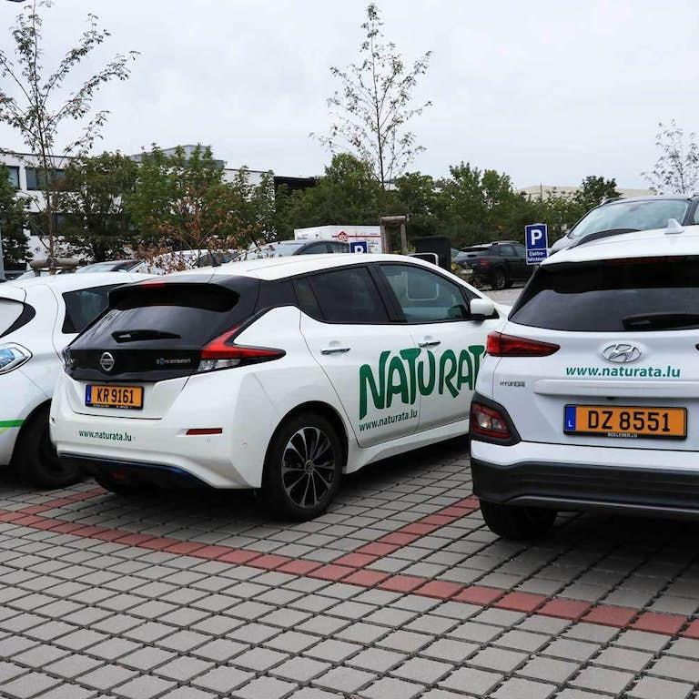 2020 Elektro Autos hinten WEB