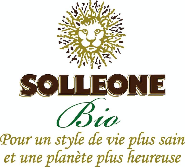 SOLLEONE-Logo